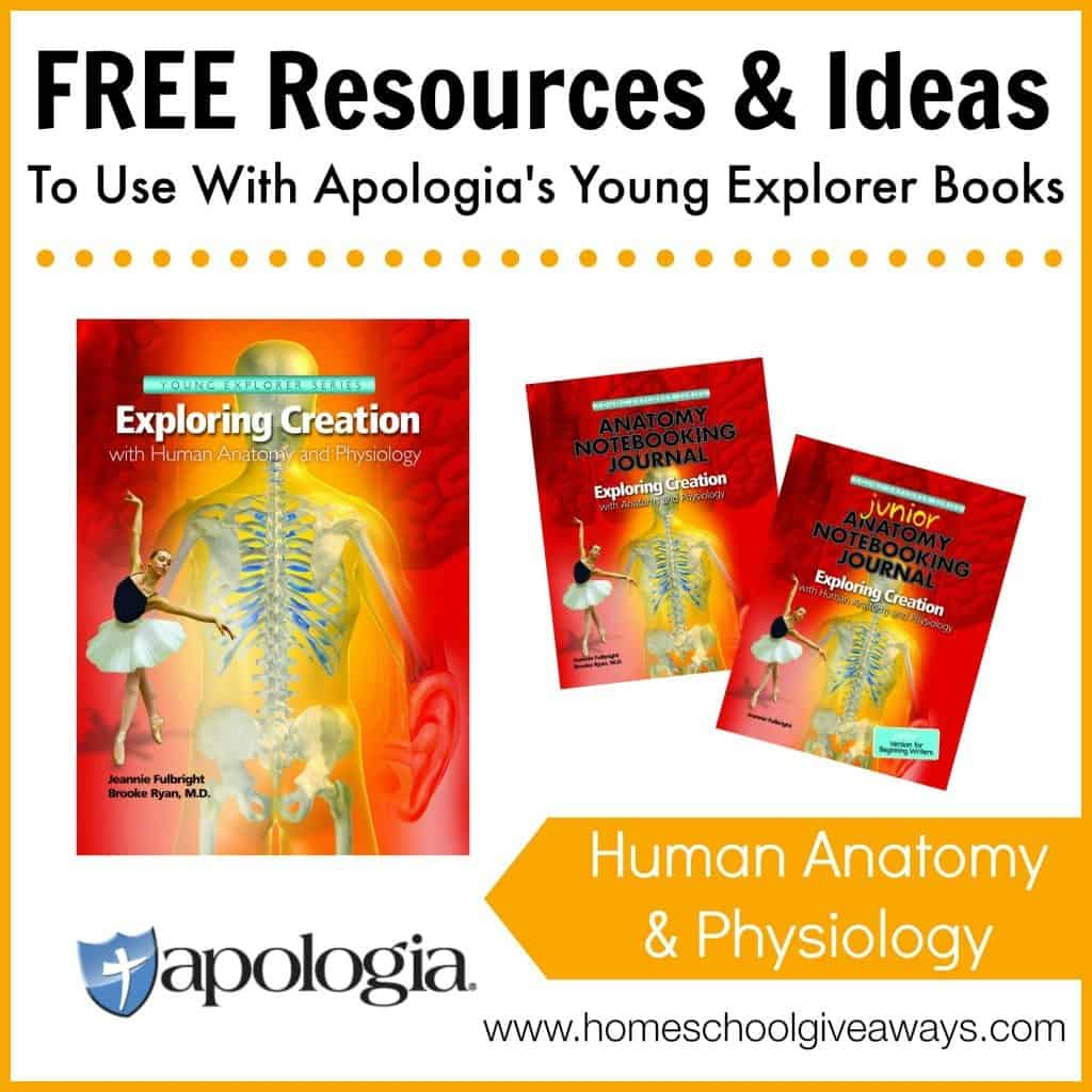Free Resources and Ideas to Use with Apologia's Young Explorer Books - Human Anatomy and Physiology
