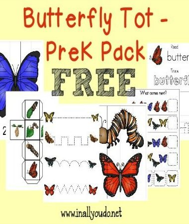 Soon enough Butterflies will be flying around. Grab this FREE Butterfly Tot/PreK/K Pack to get your little ones excited!! {FREE} :: www.homeschoolgiveaways.com