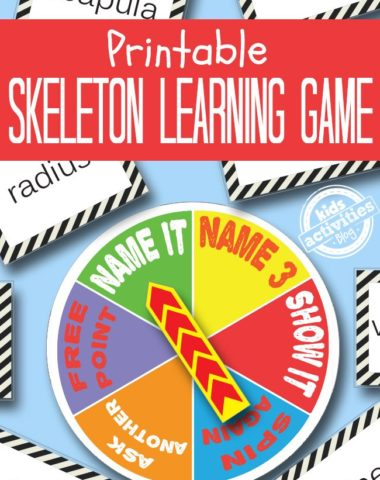 FREE Skeleton Printable Game www.homeschoolgiveaways.com FREE skeleton game. perfect to add to your 'body' studies!