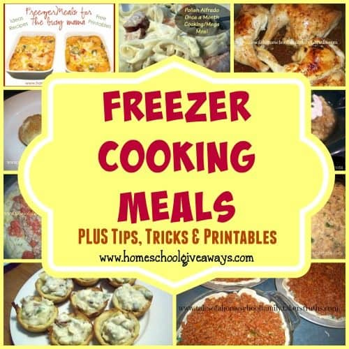 Freezer Meals are the perfect way to save money, time and take the headache out of dinner!! Check out this round-up of over 300 meals, tips, tricks Printables!! :: www.homeschoolgiveaways.com