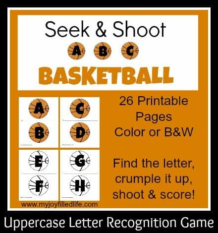 seek and shoot graphic