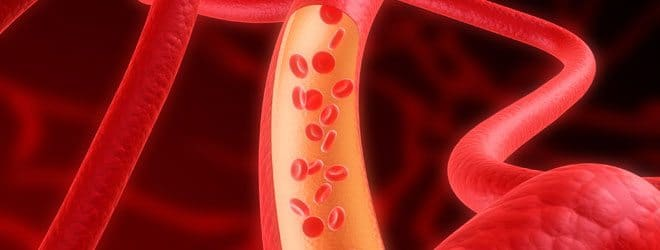 FREE Video Lesson on Peripheral Resistance and Blood Flow www.homeschoolgiveaways.com FREE Blood Flow video lesson to help the Biology student!
