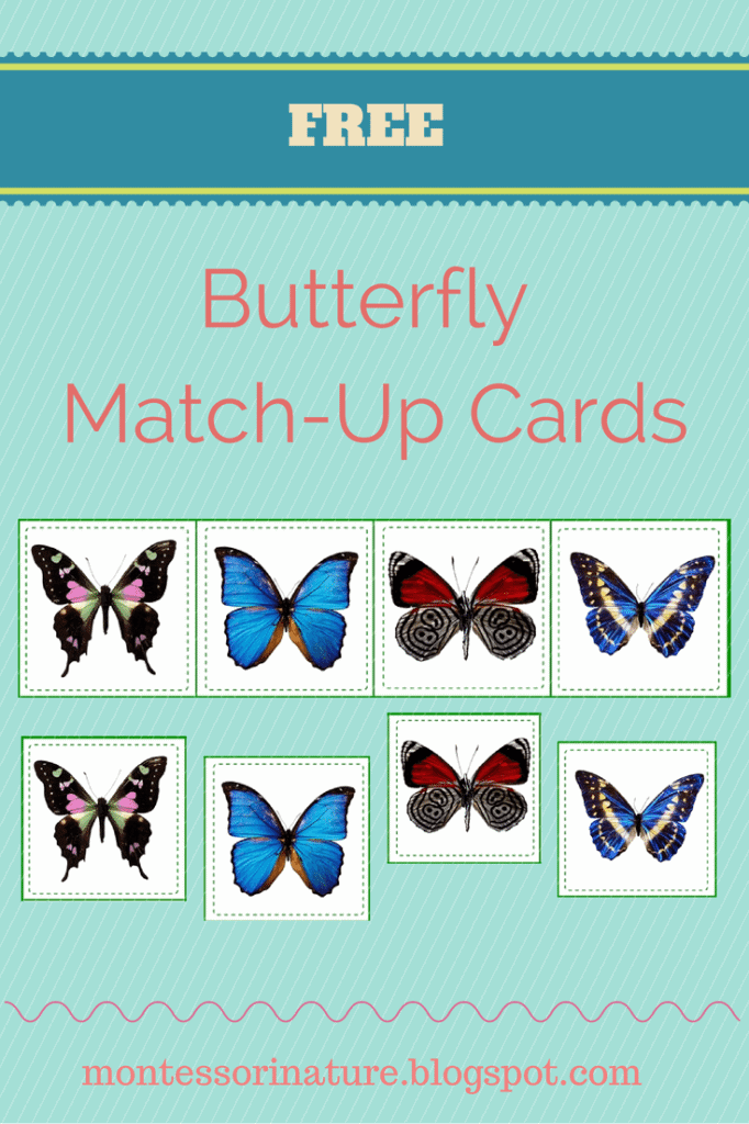 Match-Up Cards