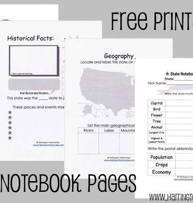 FREE State Notebooking Pages www.homeschoolgiveaways.com Grab these FREE notebooking pages to create a very individualized state notebook!