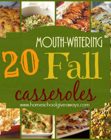 Fall is a great time to try out some of those Autumn harvested vegetables and flavors to bring about some Mouth-Watering recipes. Check out these 20 Fall Casseroles that are sure to make your mouth water! :: www.homeschoolgiveaways.com