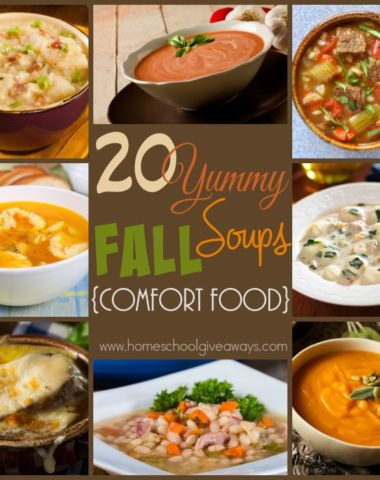 Enjoy all Fall has to offer with these 20 YUMMY Fall inspired soups!! From potatoes to squash to french onion - these are sure to make your mouth smile and your heart warm! :: www.homeschoolgiveaways.com