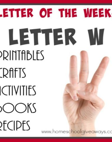 "Teaching the letter ""W"" just got easier! Check out all these {free} printables, crafts, activities, books & recipes to make learning the letter fun and successful! :: www.homeschoolgiveaways.com"