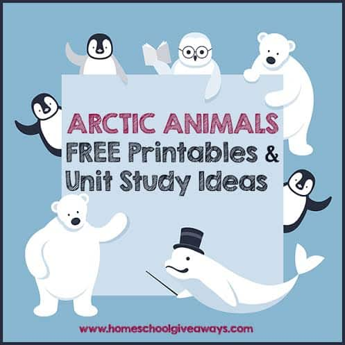 Arctic Animals FREE Printables And Unit Study Ideas - Homeschool Giveaways