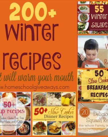 If you're looking to warm up your kitchen and fill your belly this winter, check out these delicious recipes! Over 200 recipes including salads, soups, slow cooker recipes and more! :: www.homeschoolgiveaways.com