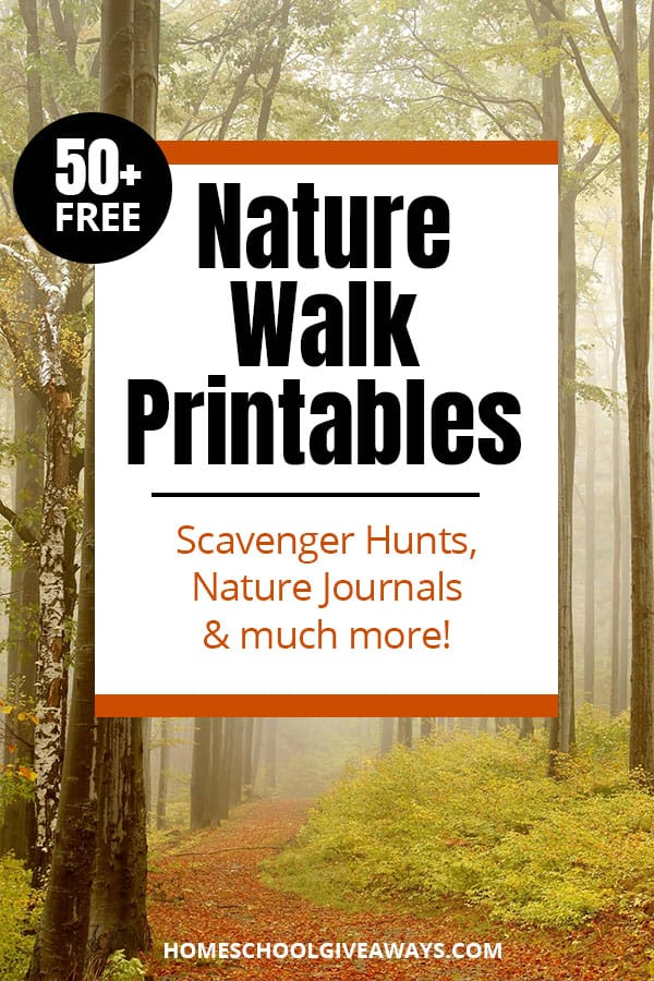 foggy forest trail with text overlay Over 50 Free Nature Walk Printables