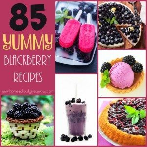 Blackberries are my absolutely FAVORITE berry. I could eat them by the bushel. Check out these YUMMY recipes you can make! :: www.homeschoolgiveaways.com
