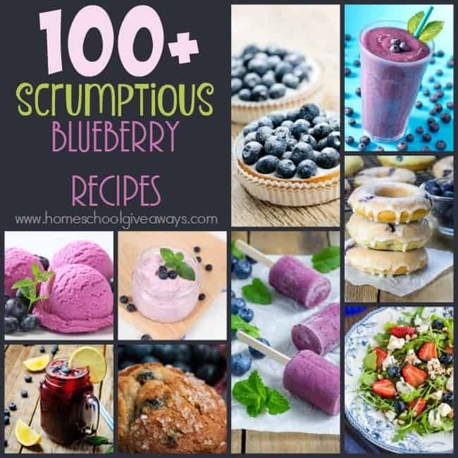 If you love blueberries, then don't miss this HUGE post with over 100 scrumptious recipes. From breakfasts to smoothies to salads to desserts and MORE! :: www.homeschoolgiveaways.com