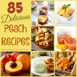 Peaches are a delicious fruit with so many uses. Check out these 85 DELICIOUS Peach Recipes you can make all year long! :: www.homeschoolgiveaways.com