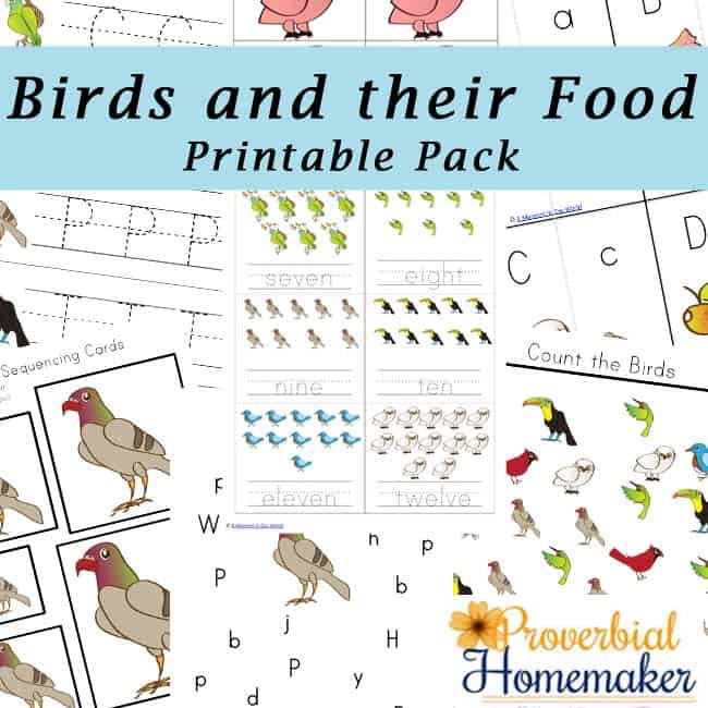 Birds-and-Their-Food-Printable-Pack