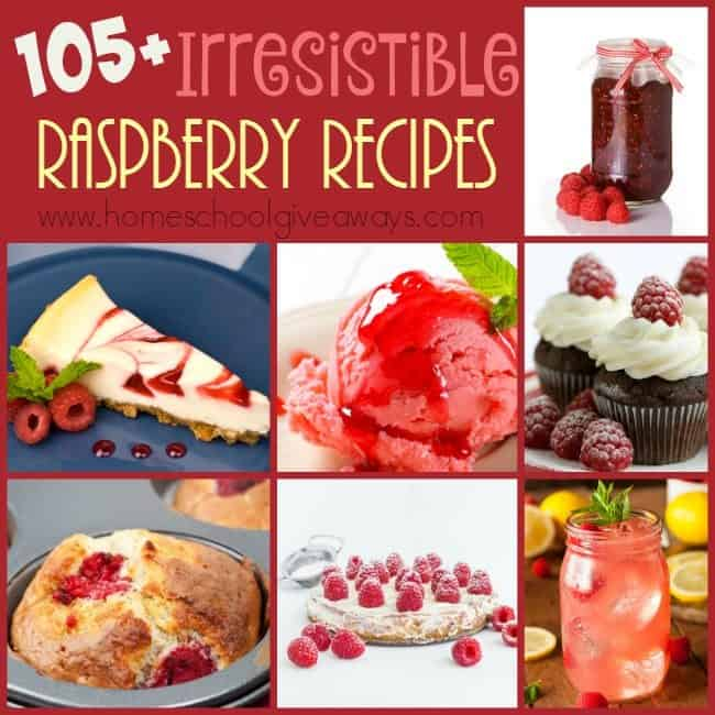 There's nothing better than fresh raspberries. Except maybe some of these Irresistible recipes! Over 105 to choose from! :: www.homeschoolgiveaways.com