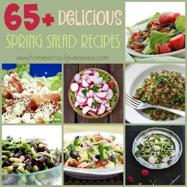 Spring is here and these delicious Spring-inspired Salads are just what you need for a quick and easy meal! :: www.homeschoolgiveaways.com