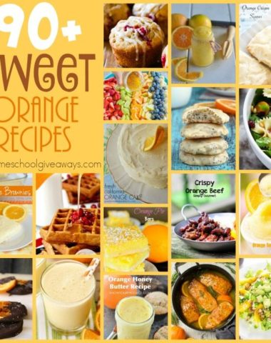 Do you love oranges? Try some of these SWEET Orange recipes to change things up a bit this summer! :: www.inallyoudo.net