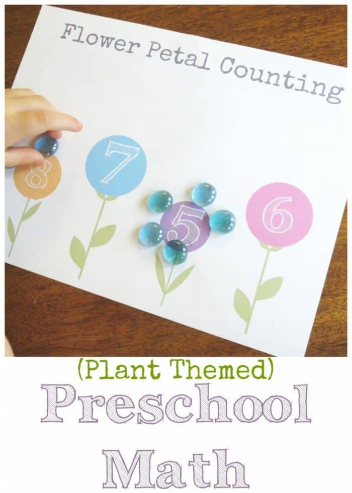 Plant-themed-preschool-math-731x1024