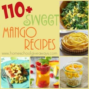 If you love Mangoes, don't miss this HUGE list of Mango Recipes. From breakfasts to smoothies to desserts and main dishes, we've got it all! :: www.homeschoolgiveaways.com