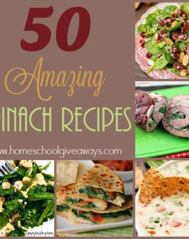 Spinach can be a wonderful addition to any meal. Check out these breakfast, appetizers, sides, salads and more! :: www.homeschoolgiveaways.com