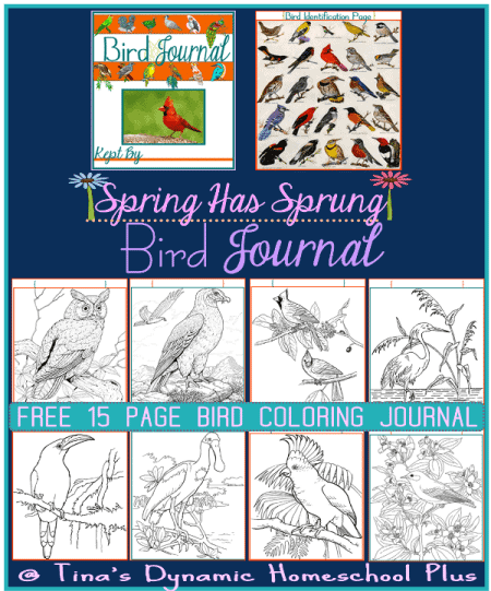 bird-journal-coloring-pages-collage_thumb