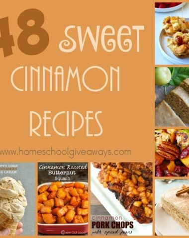 Cinnamon just says Fall to me. Check out these delicious and sweet cinnamon recipes! :: www.homeschoolgiveaways.com