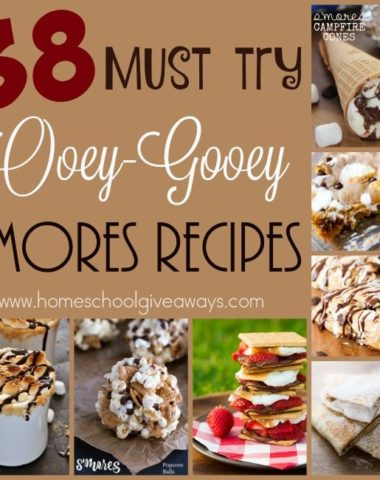 S'mores are a classic camping and bonfire treat. Check out these twists on the old classic! :: www.homeschoolgiveaways.com