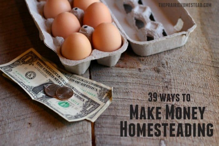 ways-make-income-homesteading