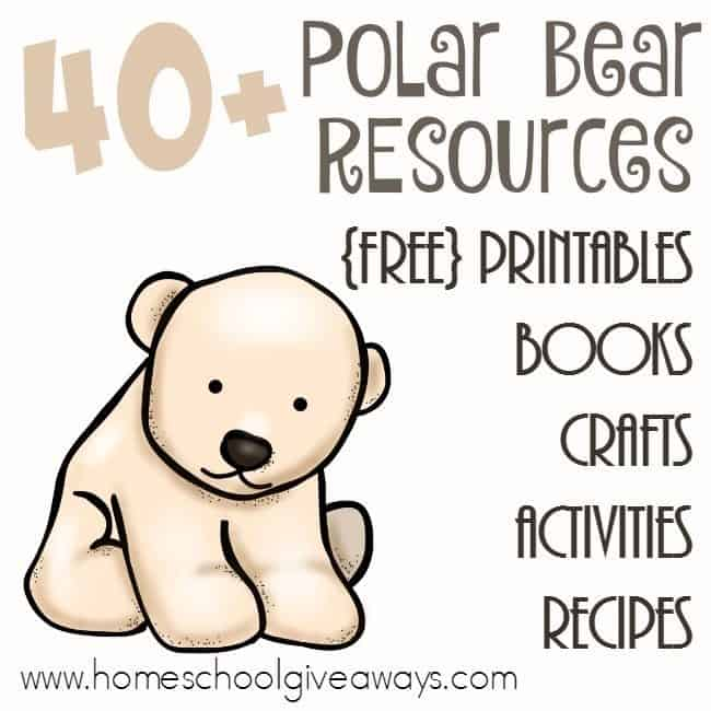 Polar bears are one of my favorite animals to watch at the zoo. They are so playful and fun! With these resources, you can learn all about them before seeing them! Over 40 printables, books, crafts, recipes and more! :: www.homeschoolgiveaways.com