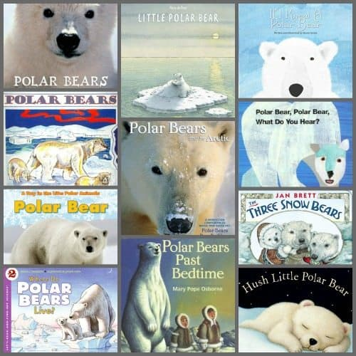 polar bears books