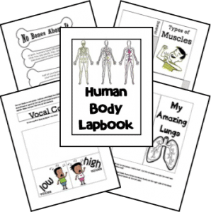 human-body-unit-and-lapbook