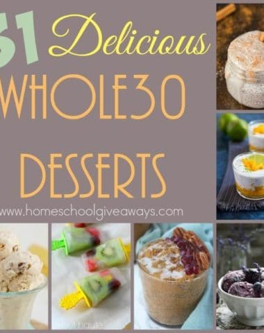 Just because you're on a diet or new healthy eating lifestyle doesn't mean you can never have dessert again. Check out these Delicious Whole30 Dessert recipes that are sure to please your taste buds! :: www.homeschoolgiveaways.com