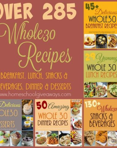 Starting the Whole30 Challenge isn't easy, because there is so much information out there. Here are some great tips for getting started as well as over 285 recipes to make it easy! :: www.homeschoolgiveaways.com