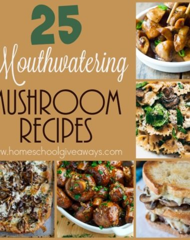 Mushrooms can be so versatile in dishes, whether as the star or for added flavor. These mouthwatering recipes will make you want to run to the kitchen and get cooking. :: www.homeschoolgiveaways.com