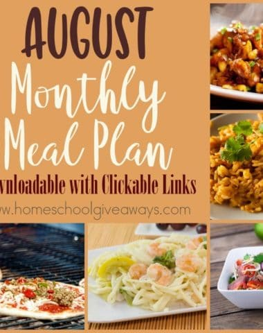 August is one of the busiest months, as summer comes to an end and school starts back up. Sometimes getting back in to our routines is tough. So grab this August Monthly Meal Plan to help! :: www.homeschoolgiveaways.com