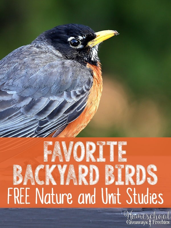 Favorite Backyard Birds FREE Nature and Unit Studies