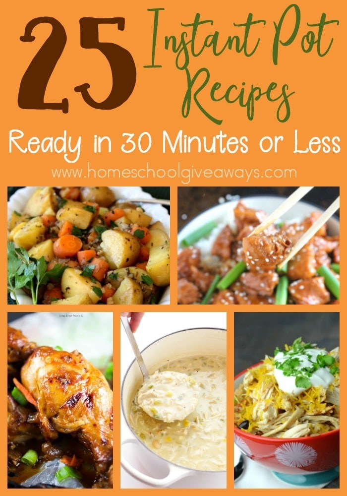 Make delicious meals in just 30 minutes or less with these Instant Pot recipes! :: www.homeschoolgiveaways.com