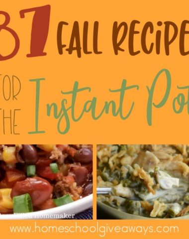 If you love your Instant Pot as much as I do, then check out these delicious Fall Recipes for the Instant Pot. :: www.homeschoolgiveaways.com