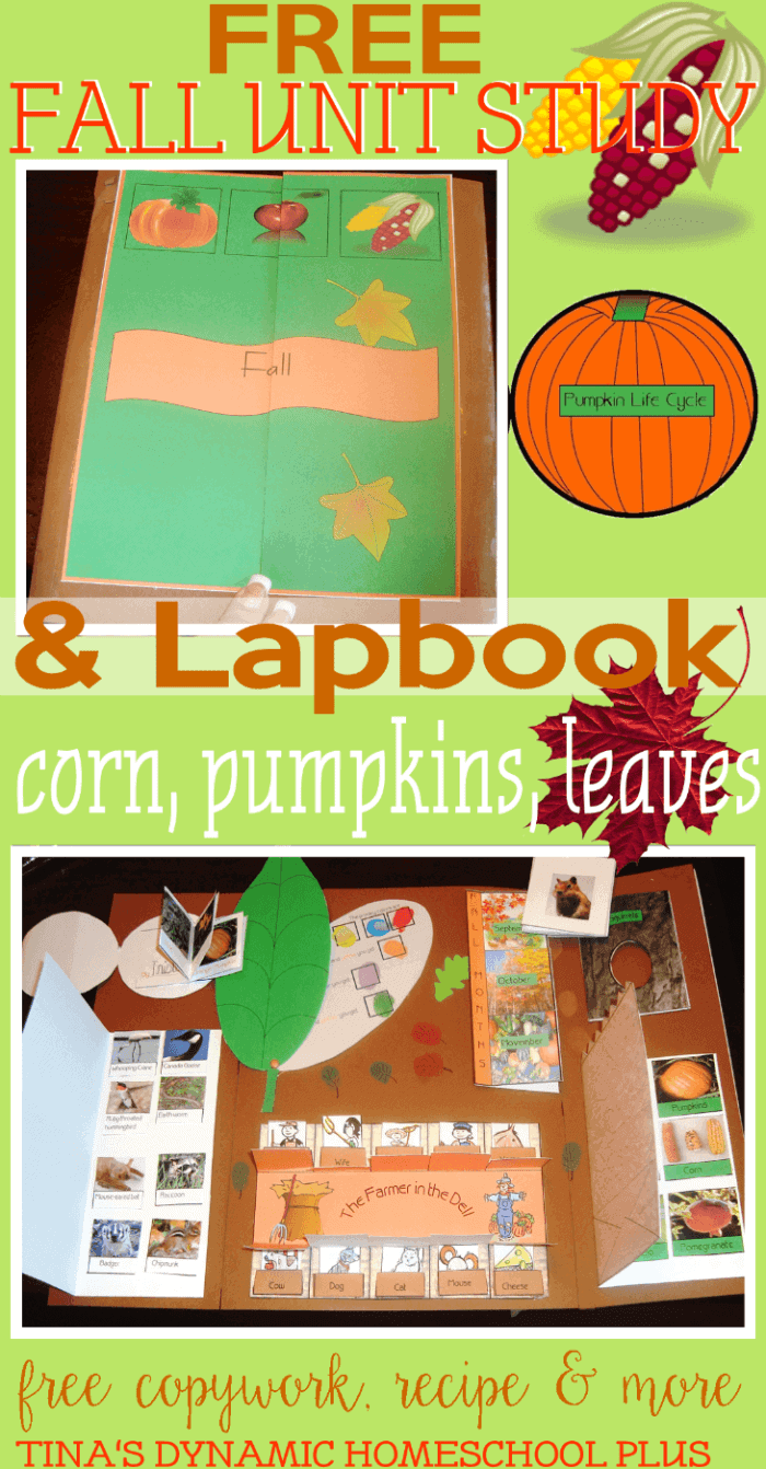 Free-Fall-Unit-Study-Lapbook.-Minibooks-about-pumpkinsleaves-corn-and-MORE-@-Tinas-Dynamic-Homeschool-Plus