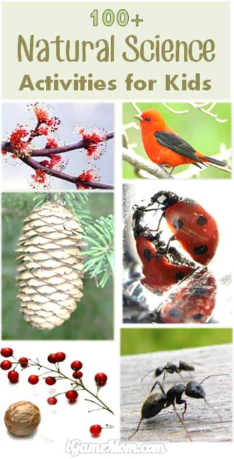 nature-science-activities-for-kids