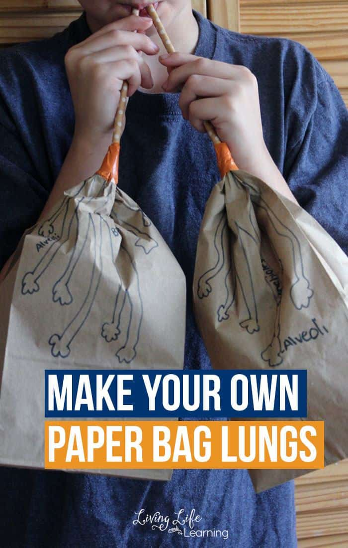 make-your-own-paper-bag-lungs-activity