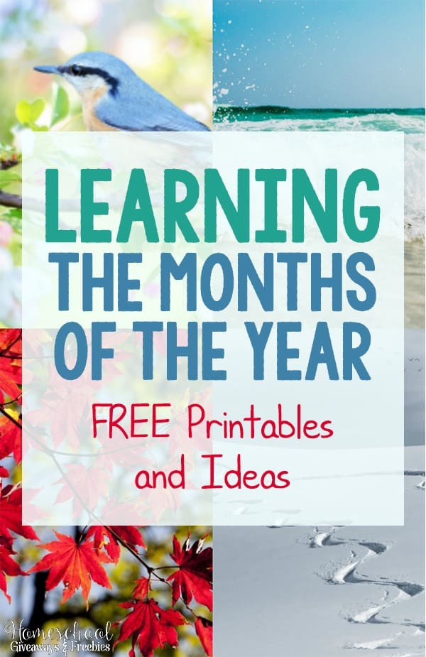 Learning the Months of the Year - FREE Printables and Ideas