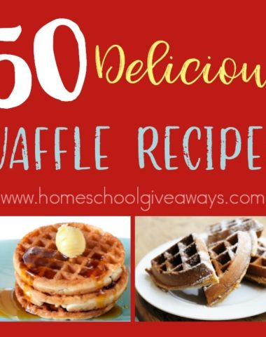 Who doesn't love waffles? Especially homemade, delicious ones? They can be so versatile and absolutely delicious too! Check out these recipes for your next breakfast! :: www.homeschoolgiveaways.com
