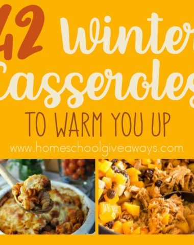 Don't have time for a 4-course dinner? Check out these Winter Casseroles that have delicious winter vegetables and meat that will warm you up in no time! :: www.homeschoolgiveaways.com