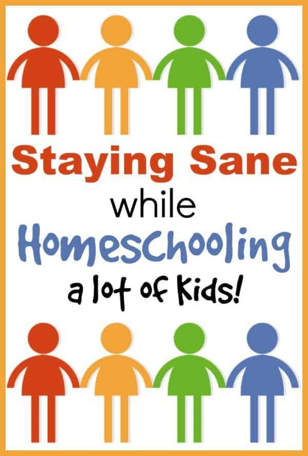 How-to-Stay-Sane-While-Homeschooling-a-lot-of-Kids-600x886