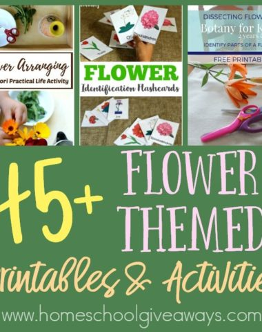 Spring is here and that means flowers are blooming all around. Which also makes it the perfect time to study them! Check out these FREE Flower Themed Printables & Activities!! :: www.homeschoolgiveaways.com