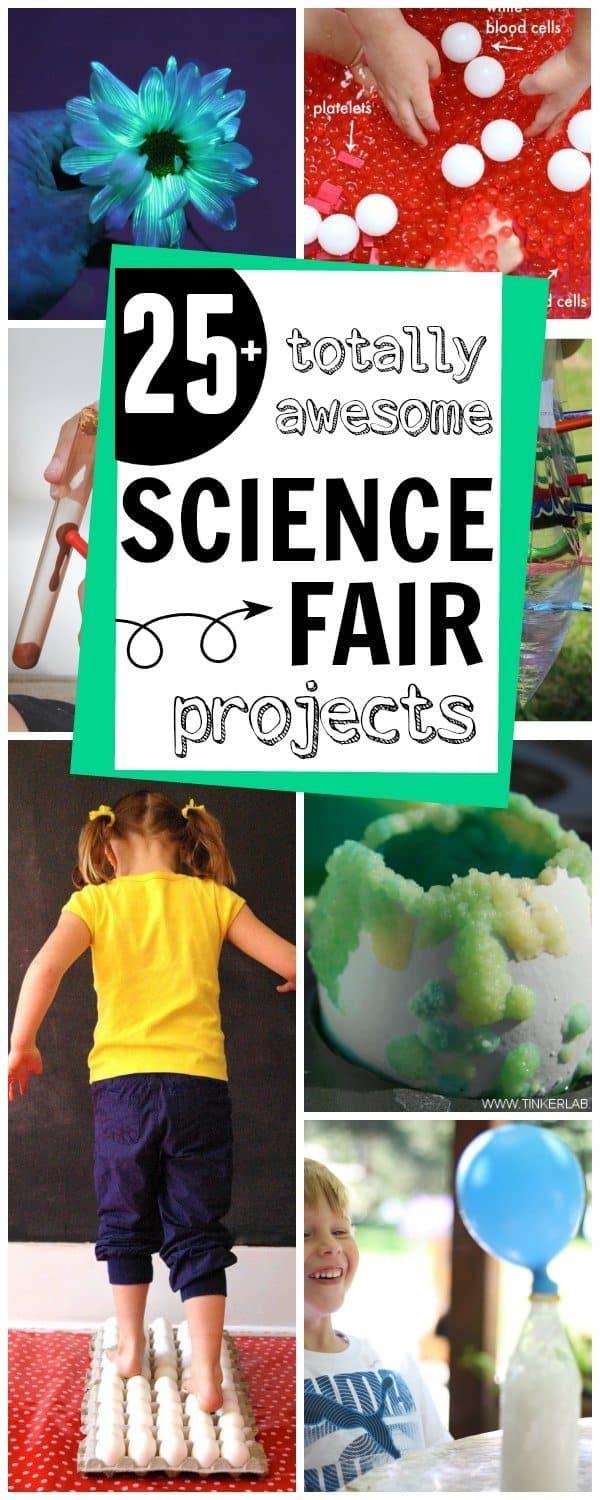 More-than-25-totally-awesome-Science-Fair-Projects