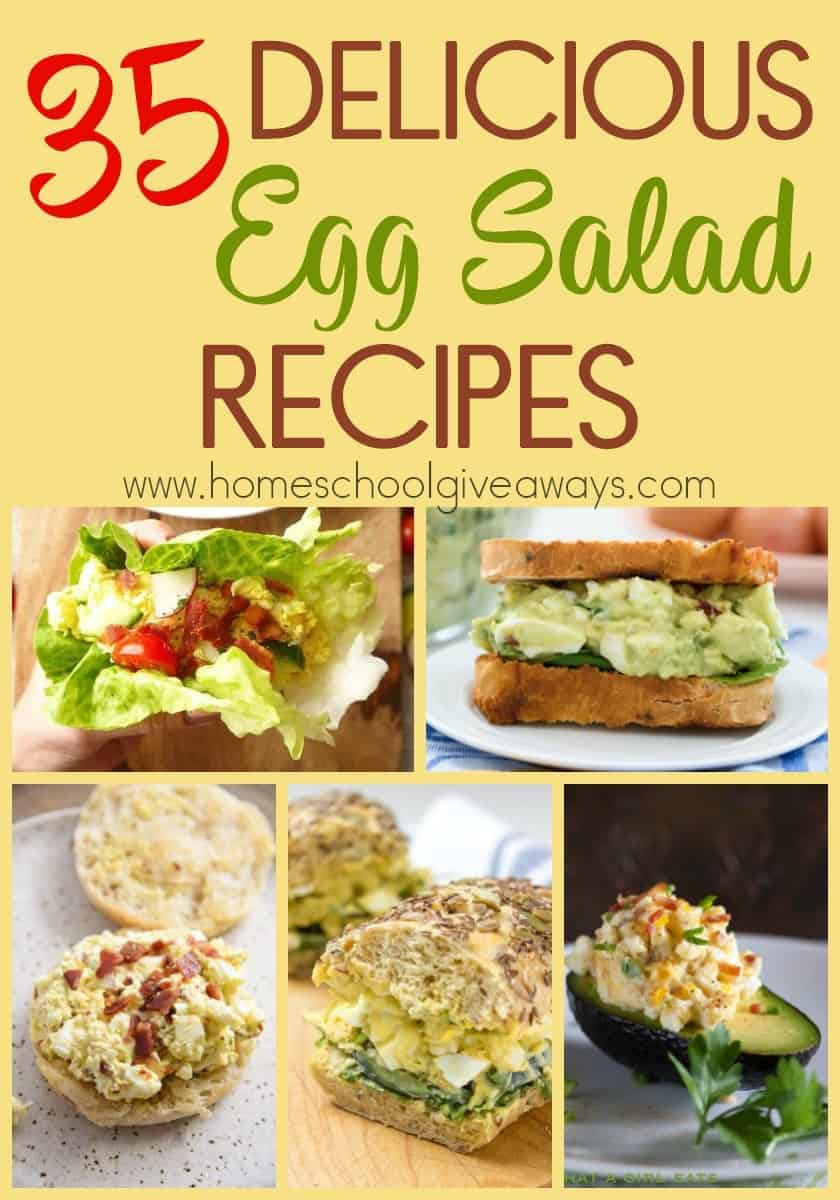 Egg salad is such a versatile dish. It is one that can be the main dish for the evening, an appetizer to a dinner party or the perfect addition to a picnic in the park. Check out these delicious recipes for some new twists on an old favorite! :: www.homeschoolgiveaways.com