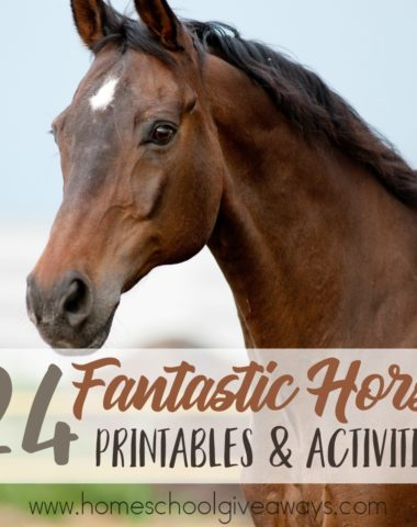Whether your children love horses, want to learn about them or you're working through a series on farm animals, these Horse printables and activities are perfect! :: www.homeschooolgiveaways.com