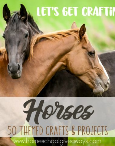 If you're studying horses, you'll want to add in some of these fun crafts too! :: www.homeschoolgiveaways.com